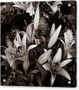 Cambodian Flower Arrangement Acrylic Print