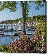 Camden Harbor Spring Acrylic Print by Susan Cole Kelly