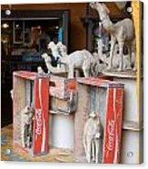 Camel Cola Acrylic Print