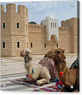 Camels Tunis Acrylic Print