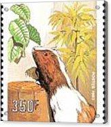 Cameroon Stamp Acrylic Print