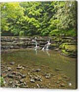 Campbell Falls 6 Acrylic Print