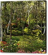 Campbell Rhododendron Gardens 2am 6831-6832 Panorama Acrylic Print