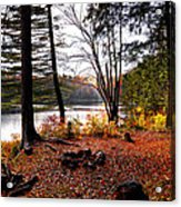 Campsite On Cary Lake Acrylic Print