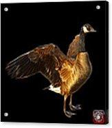 Canada Goose Pop Art - 7585 - Bb  Acrylic Print