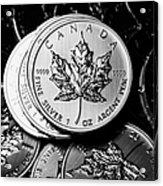 Canadian One Ounce Maple Leaf Silver Coins Acrylic Print