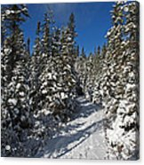 Canadian Winter Wonderland.. Acrylic Print