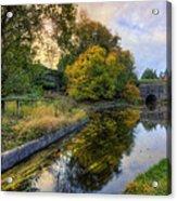 Canal Drifting Leaves Acrylic Print