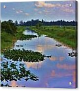 Canal In The Glades Acrylic Print