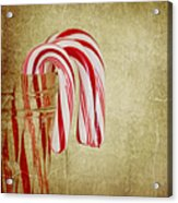 Candy Canes Acrylic Print