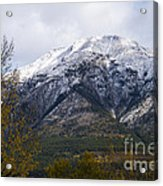 Canmore Rocky Mountain View  Acrylic Print