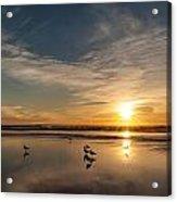 Cannon Beach Sunset Tidal Flats Acrylic Print