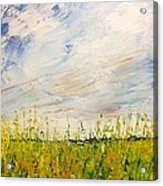 Canola Field In Abstract Acrylic Print