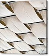 Canvas Ceiling Detail Acrylic Print
