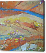 Canyon Dreams 23 Acrylic Print