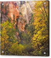 Canyon Kaleidoscope  Acrylic Print by Peter Coskun