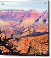 Canyon Shadows Acrylic Print by Janice Sakry