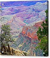 Canyon View From Walhalla Overlook On North Rim Of Grand Canyon-arizona  Acrylic Print
