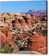 Canyonlands National Park Acrylic Print