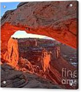 Canyonlands Spectacular Acrylic Print