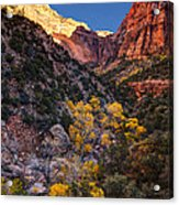 Canyons Of Zion At Autumn Acrylic Print