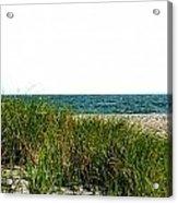 Cape Cod Dunes Acrylic Print