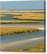 Cape Cod Wetlands Acrylic Print
