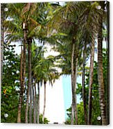 Cape Florida Walkway Acrylic Print