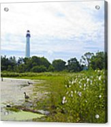 Cape May Lighthouse - New Jersey Acrylic Print