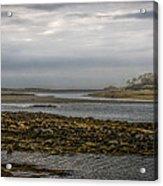 Cape Porpoise Maine - Fog On The Horizon Acrylic Print
