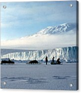 Capeevans-antarctica-g.punt-7 Acrylic Print