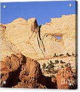 Capitol Reef National Park, Utah Acrylic Print by Mark Newman