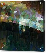 Capixart Abstract 77 Acrylic Print by Chris Axford