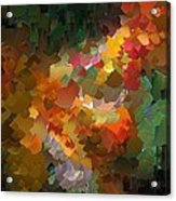Capixart Abstract 90 Acrylic Print by Chris Axford