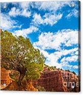 Caprock Canyon Tree Acrylic Print