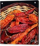 Capsicum Baccatum Chilis Acrylic Print