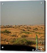 Caravan Of Camel In The Desert. Acrylic Print