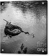 Carcass In The River Acrylic Print