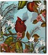 Cardinal And Apples Acrylic Print