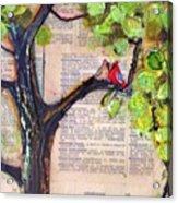 Cardinal Couple Detail Acrylic Print