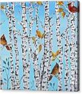 Cardinals Among The Birch-jp2061 Acrylic Print