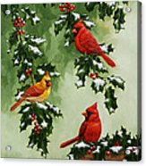 Cardinals And Holly - Version With Snow Acrylic Print by Crista Forest