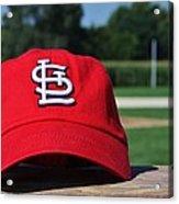 Cardinals In Iowa Acrylic Print