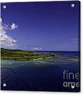 Caribbean Breeze Eight Acrylic Print