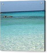 Caribbean Celeste Fresh Acrylic Print