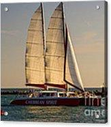 Caribbean Spirit Sails Miami Acrylic Print