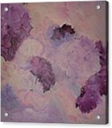 Carnations Floating Acrylic Print