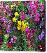 Carnival Flowers Acrylic Print