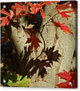 Carolina Autumn Acrylic Print