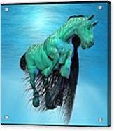 Carousel Xi Acrylic Print